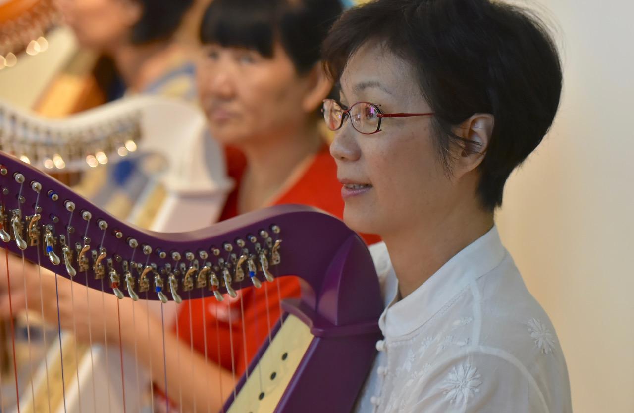 Online Harp Lessons